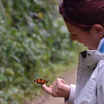 Una farfalla che mi si è posata in mano